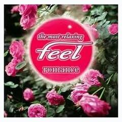 The Most Relaxing Feel Romance - Various Artists