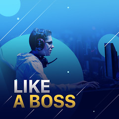 Like A Boss - Various Artists