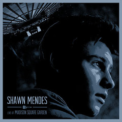 Live At Madison Square Garden - Shawn Mendes