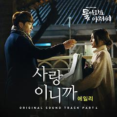 Come Back Mister OST Part.4 - Aliee