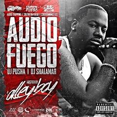 Audio Fuego (CD1) - Various Artists