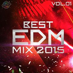 Best EDM Mix 2015 (Vol.1) - Various Artists