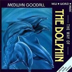 The Way Of The Dolphine - Medwyn Goodall