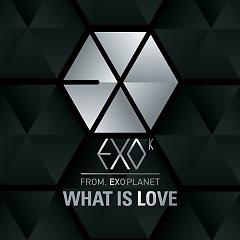 What Is Love - EXO-M ft. EXO-K