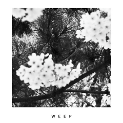 The Weight Of A Lonely Conversation - Weep