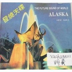 The Future Sound Of World Alaska New Age I - Various Artists