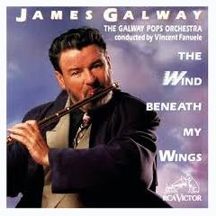 Wind Beneath My Wings - James Galway