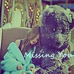 Kpop Collection: Missing You - Various Artists