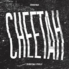 CHEETAH ITSELF - Cheetah