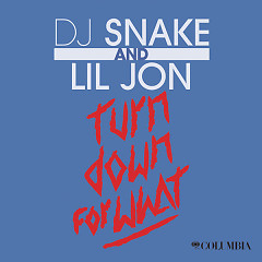 Turn Down For What (Single),Lil Jon - DJ Snake