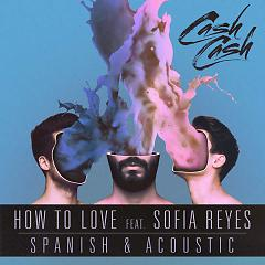 How To Love (Spanish & Acoustic) - Cash Cash