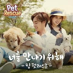 Pet Rescue - Roy Kim ft. Bae Da Hae