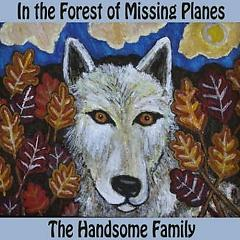 In The Forest Of Missing Planes - The Handsome Family