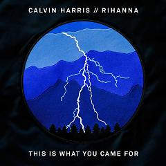 This Is What You Came For,Rihanna - Calvin Harris