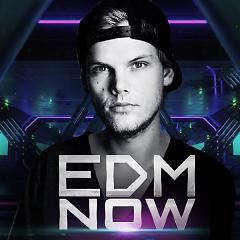 EDM Now - Various Artists