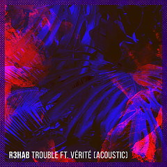Trouble (Acoustic) (Single) - R3hab
