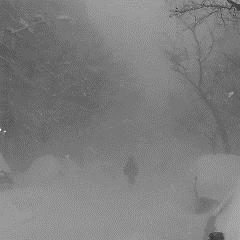 Love Incredible (Single) - Cashmere Cat