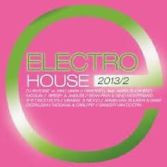 Electro House 2013/2 CD 1 (No. 1) - Various Artists