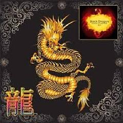 Black Dragon - Exclusive Lounge Music 2012 (No. 3) - Various Artists