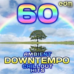 60 Ambient, Downtempo, Chillout Hits (No. 5) - Various Artists