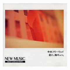 New Music Best Collection 8 - Various Artists
